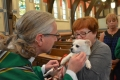 blessing-of-the-animals-2016-12