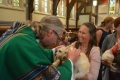 blessing-of-the-animals-2016-8